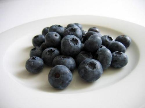 Comment faire pousser Blueberries dans le Michigan
